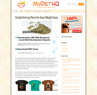 NicheJet | Done-For-You Niche Sites!
